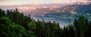 copy-Zurich-lake-view.png