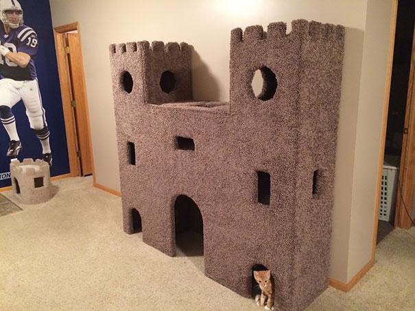 Kitty castle