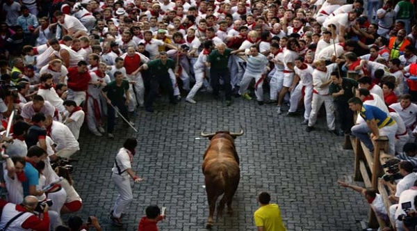 If you are an adventurous spirit, bulls race in Spain is a perfect spot for you.