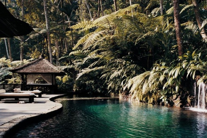 Bali jungle pool is one of the most amazing swimming pools in the world.