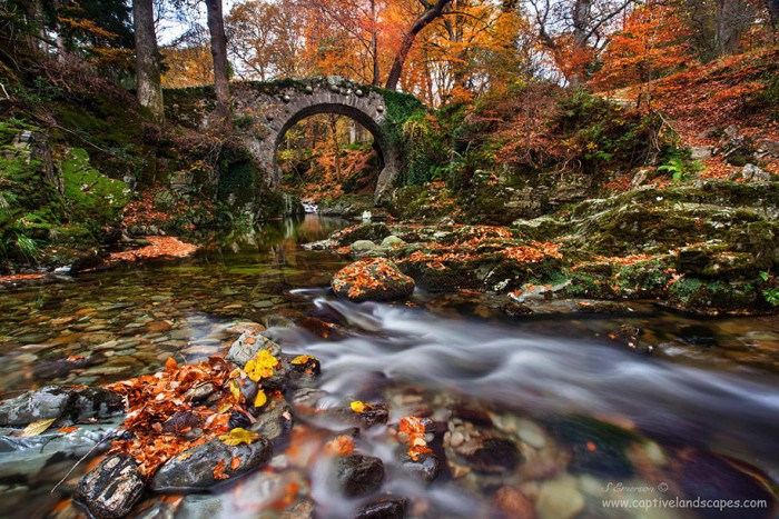 Tollymore Forest Park in Northern Ireland is one of the World's most magical old bridges