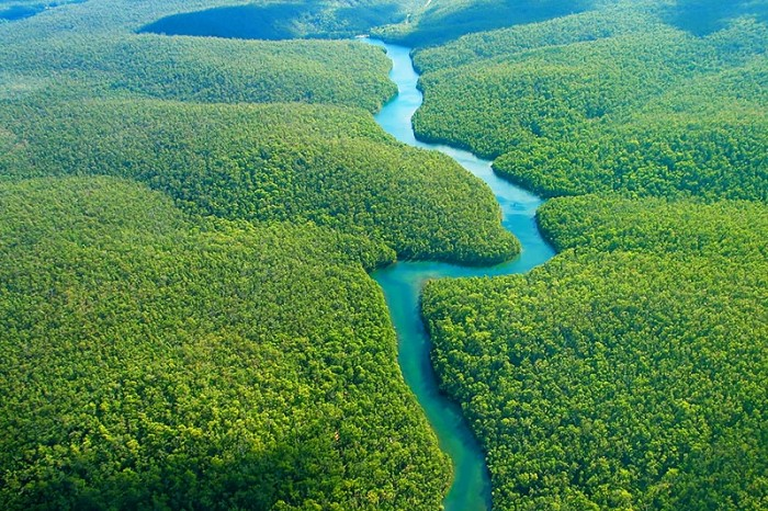 The Amazon river is one of the tourist attractions in Brazil you must visit.