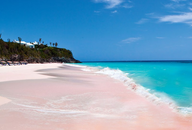 Unique beaches in the world, Pink Sand beach in the Bahamas