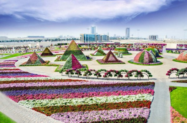 Dubai Flower Garden in UAE