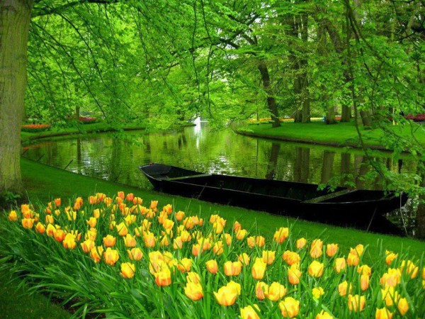 Keukenhof Gardens in Holland --- Image by © Photolibrary/Corbis