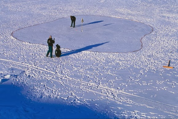 The Uummannaq Ice Golf Course in Greenland is one of the most unusual sports venues in the world.