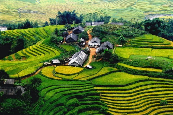 Terrace fields of rice are one of the most beautiful places to visit in Vietnam.