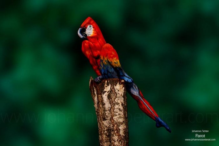 Full body painting create a perfect illusion of a colorful parrot.