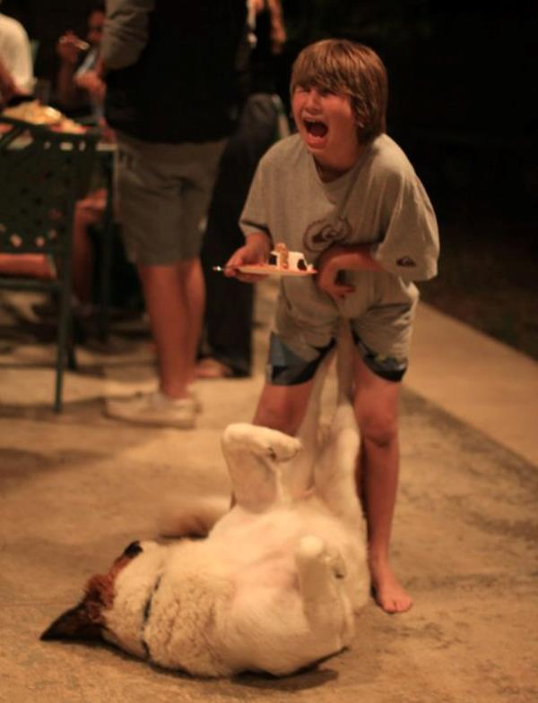 perfectly timed photos, kid, dog
