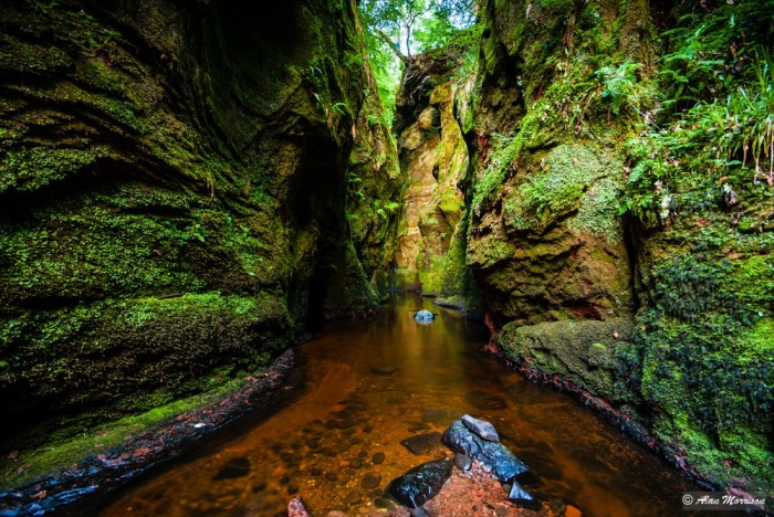 Finnich Glen in Drymen is one of top 15 Scotland tourist attractions.