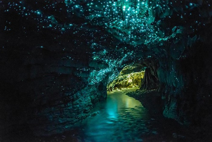 Glowworms Cave in New Zealand is one of the 20 unbelievable places on earth.