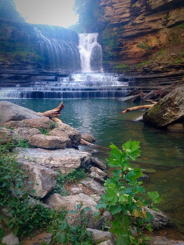 Cummins Falls in Tennessee is one of the best swimming holes in America.