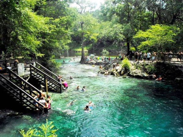 Madison blue springs state park in Florida is one of the best swimming holes in America.