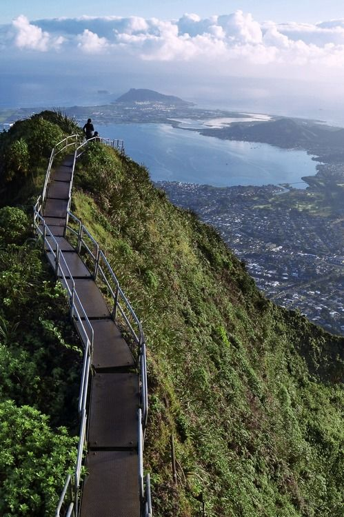 Would you dare to climb the Haiku stairs in Oahu in Hawaii?