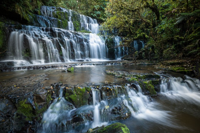 Purakaunui Faals are one of the most beautiful places in New Zealand.