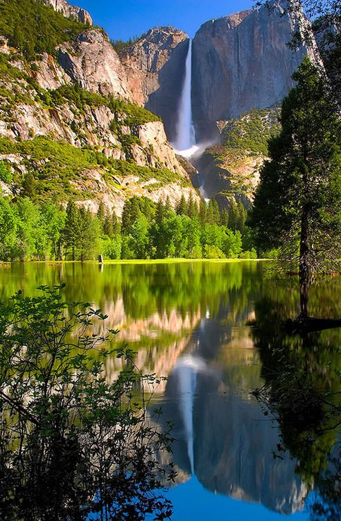 Yosemite National park in California  is one of the 20 most checked-in places on Facebook in 2015.