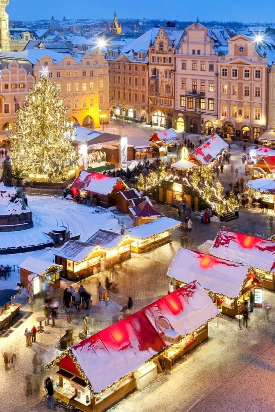 One of the best Christmas markets in Europe is in Prague.