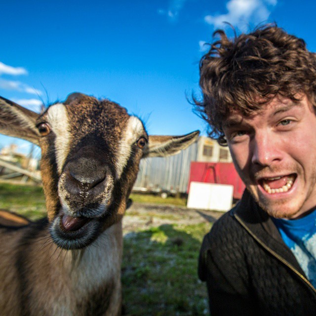 These are 20 funny animal selfies taken by Allan Dixon.