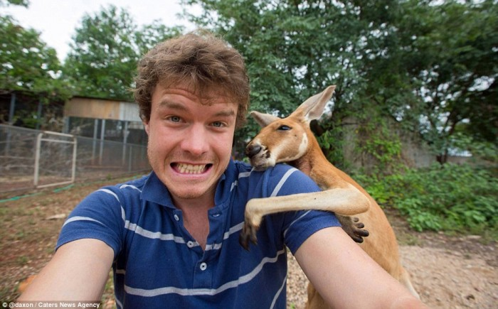 These are 20 hilarious animal selfies taken by Allan Dixon.