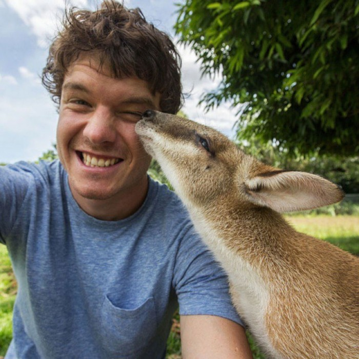 Funny animal selfies taken by a self-proclaimed animal whisperer Allan Dixon.