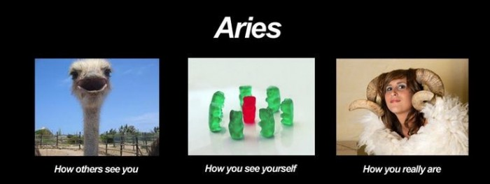 What are the positive and negative traits of the zodiac signs? Aries