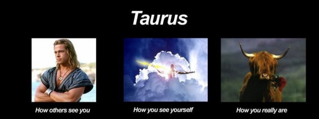 What are the positive and negative traits of the zodiac signs? Taurus