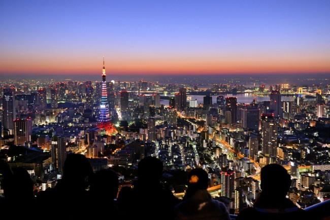 Tokyo looks amazing at dusk.