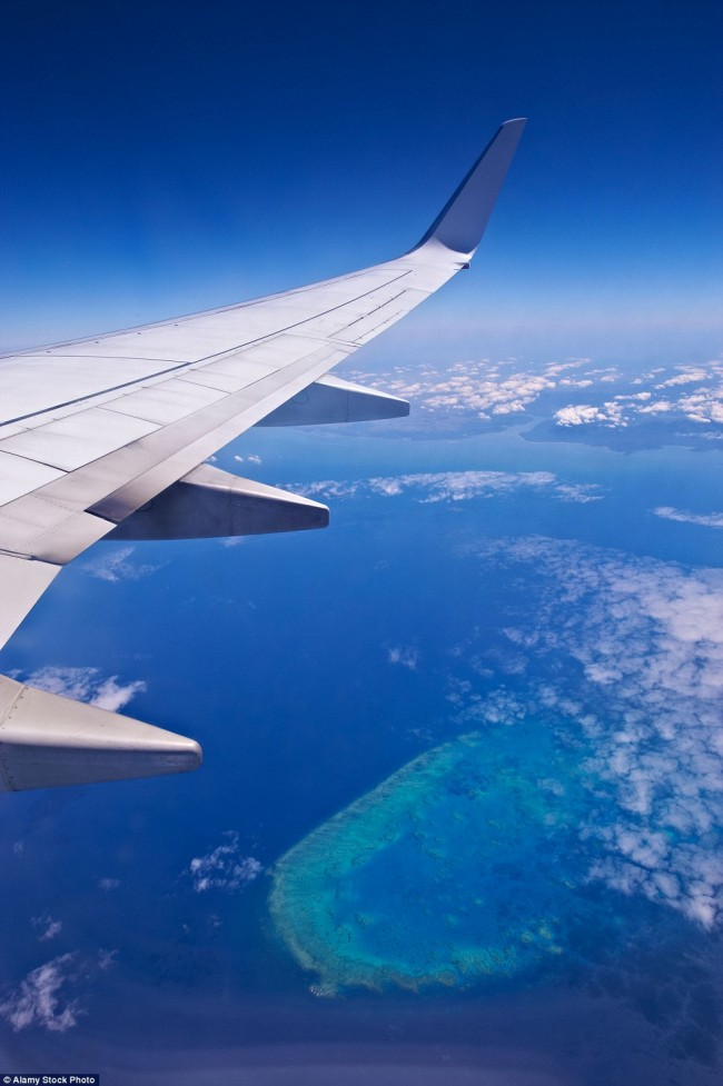 Impressive airplane window seat pictures that will blow your mind. Photo of Australia's Great Barrier Reef.