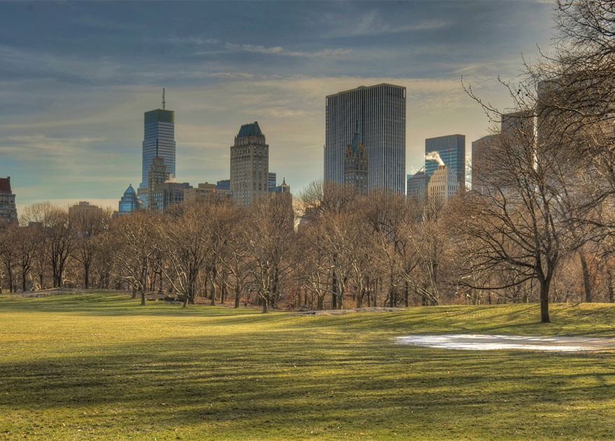 This is what Sheep Meadow looks like during high and low season.