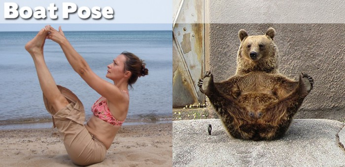 Take a look at our compilation of 20 cute animals doing yoga.
