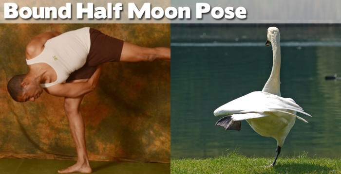 Bound half moon pose