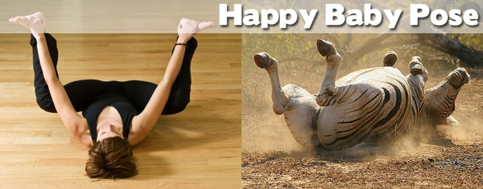 Take a look at our compilation of 20 cute animals doing yoga. This is a happy baby pose.
