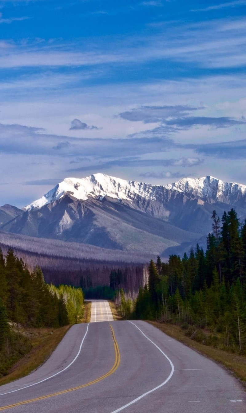 The Road to the Canadian Rockies is one of the roads you need to drive in your lifetime.