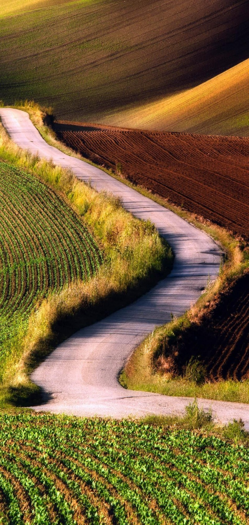 Scenic Road in Southern Moravia in Czech republic  is one of the roads you need to drive in your lifetime.