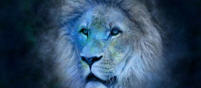 Leo  2017 horoscope predictions will give you a clear insight into how this year is going to turn out for all Lions.