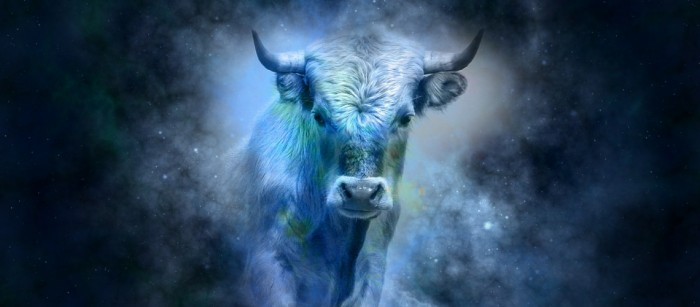 Taurus 2017 horoscope predictions will give you a clear insight into how this year is going to turn out for all Bulls.
