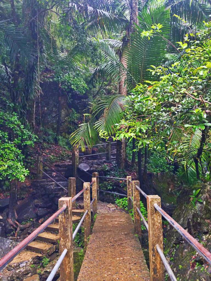 Puerto Rico is the go-to destination in the Caribbean. This is La Mina Falls walking trail in El Yunque rainforest.