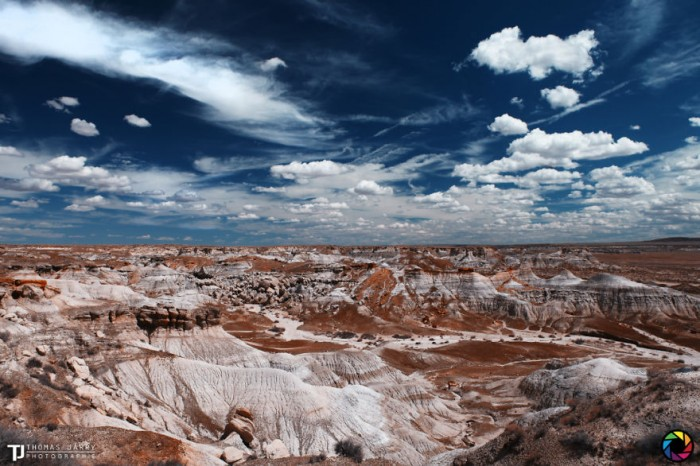 American landscape seen through the eyes of Thomas Jarry. This is Petrified National Park in Arizona.
