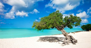 Aruba is one happy island, and here is why.